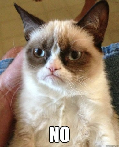 39215-grumpy-cat-no-Rwoe