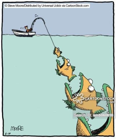 Always a bigger fish.