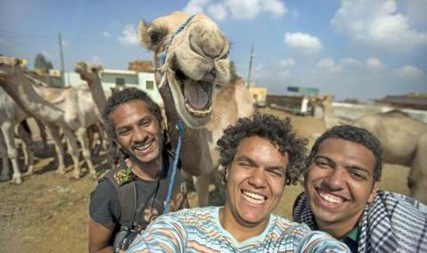 Selfie-With-Smiling-Camel-Goes-Viral-On-Facebook-523627